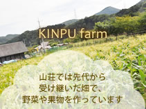 KINPU farm 山荘では先代から受け継いだ畑で、野菜や果物を作っています